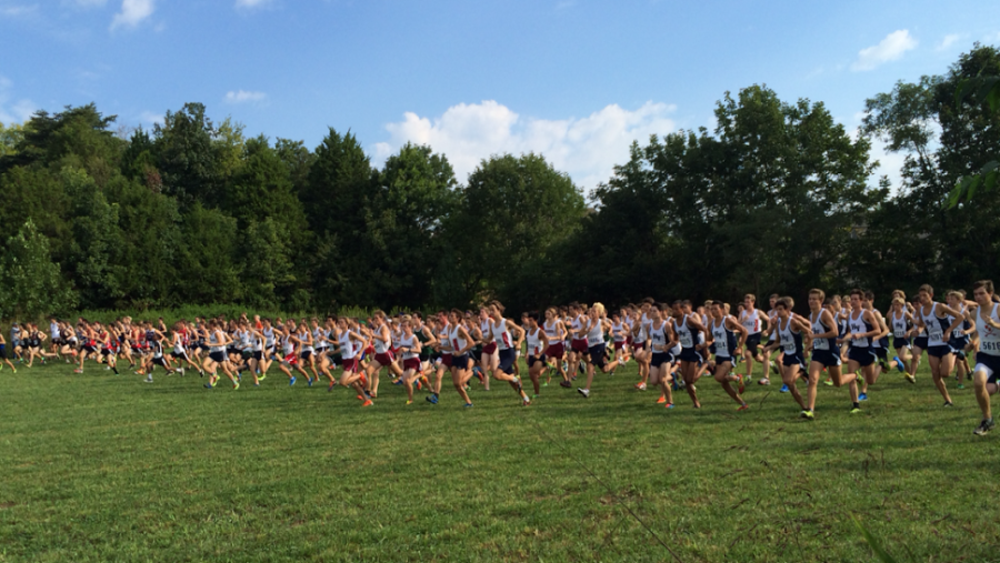 Bearden%27s+boys+cross+country+team+starts+off+a+recent+meet.