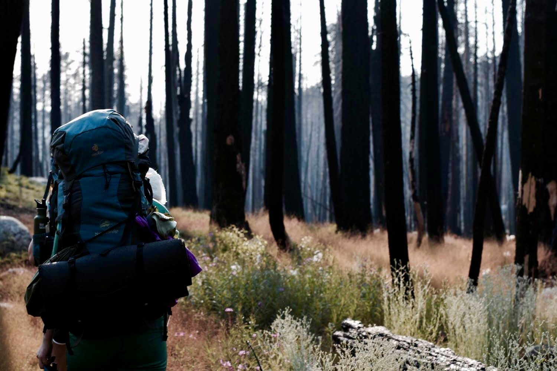 One of Fatima Bhidya's friends in Alcoa Nature Scholars backpacks through California.