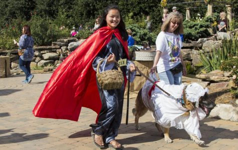 5th Annual Howl-O-Ween brings pooch parade, nonprofit awareness to UT Gardens