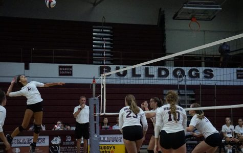 Volley Dogs turning to younger players for leadership with no returning seniors on roster