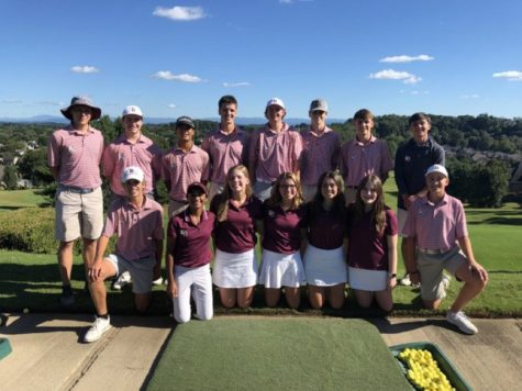 Both golf teams claimed the district title this week.